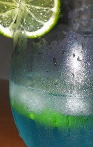 Bester Gin Adventskalender Testbericht