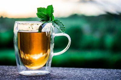 Bester Tee Adventskalender Testsieger