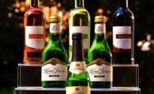 bester Wein Adventskalender